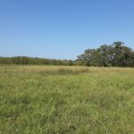 26.787 Acres Farm & Ranch, Residential, Commercial Land