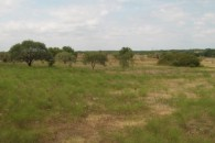 20.11 Acre Home Site, Pasture Land at Eddy, Falls County, TX 76524 for 75413
