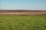 98.78 Acres Cultivated & Grazing Land at Eddy, Falls County, TX 76524 for 218800