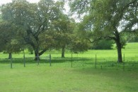 100 Acres Pasture & Hunting Land with Ranch House at Marlin, Falls County, TX 76661 for 339000