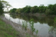 264 Acres MOL Crop, Pasture & Brazos River Frontage Land at Marlin, Falls County, TX 76661 for 1188000