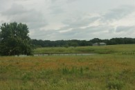 32 Acres Pasture and Recreational Land at Bremond, Robertson County, TX for 109450