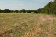 15.71 Acres Cultivated Land with Golf Course View at Marlin, Falls County, TX 76661 for 64393
