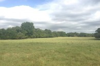 125 Acres Cattle, Horse & Hunting Land With Farmhouse at Bremond, Falls County, TX for 420593