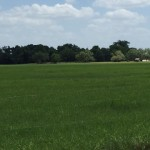 125 Acres Ranch Land and Recreation Property