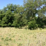 329.75 Acres Ranch Land and Recreational Property