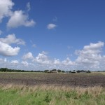 246 Acres MOL Pasture & Recreation Land With a Fixer Upper House