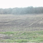83 Acres MOL Farmland
