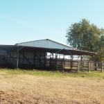 179 Acres MOL Recreational, Home Site and Ranch Land