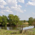 257 Acres MOL Multi-Use: Cropland, Pasture and Recreational