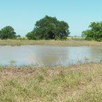 28 Acres MOL Pasture & Recreational Land