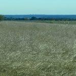 29.692 Acres Pasture & Recreation Land