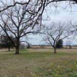 48.87 Acres MOL Pasture & Recreation Land