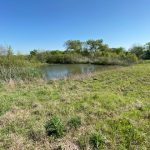 17.044 Acres MOL Pasture Land with Potential Home Site