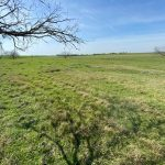 26.373 Acres MOL Pasture Land with Potential Home Site