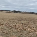 89.816 Acres MOL Pasture & Recreation Land with Cabin and Custom Home Sites