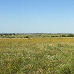 159.65 Acres Cattle, Farming & Recreational Land
